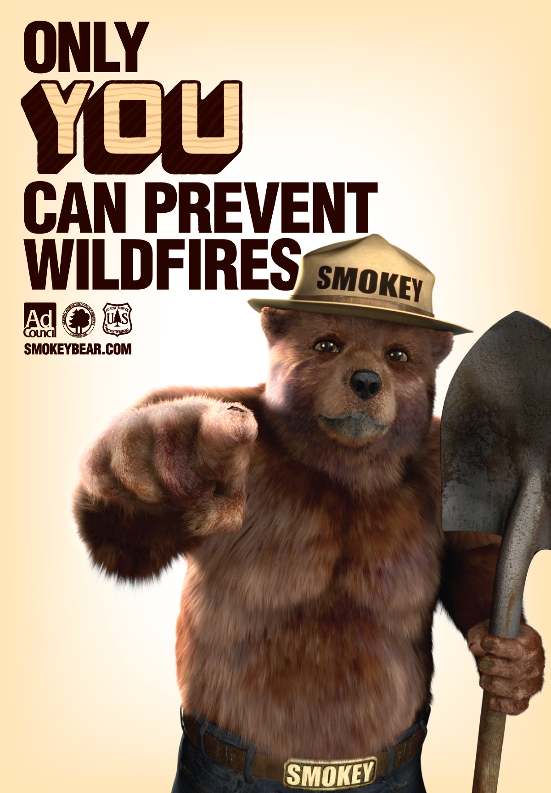 Image result for smokey the bear